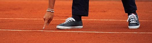 Commission Des Litiges de la Ligue de Bourgogne-Franche-Comté de Tennis